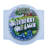 Blueberry Hill Lager